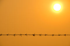 Fence of barbed wire Stock Photography