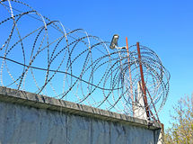 Fence with barbed wire and surveillance cameras Stock Image
