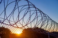 Fence with a barbed wire Royalty Free Stock Photography