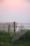 Fence at beach. At sunrise Royalty Free Stock Image