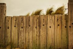 Fence and the beach Stock Image