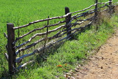Fence. A beautiful old wooden fence Royalty Free Stock Image
