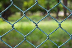 Fence. The fence with blur green background Royalty Free Stock Images