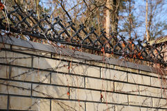 Fence of brick and wrought iron fence. Image of a decorative cast iron fence. metal fence close up. Royalty Free Stock Image