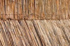 Fence from cane with light from behind Royalty Free Stock Photo