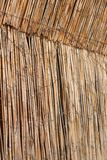 Fence from cane with light from behind Royalty Free Stock Image