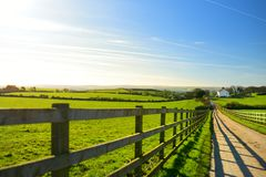 Fence casting shadows on a road leading to small house between scenic Cornish fields under blue sky, Cornwall, England Stock Photography