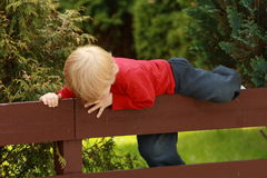 Fence Climbing. Little boy climbing a fence stock photography