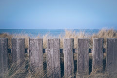 The fence Royalty Free Stock Photos