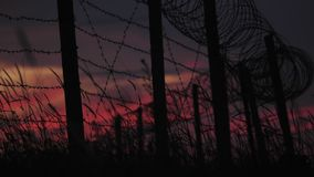 The fence with barbed wire and grass on the background of a cloudy red-blue sky. stock footage