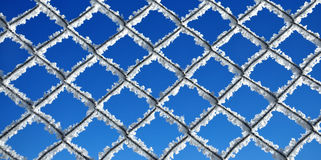 Fence covered by ice crystals against blue sky Royalty Free Stock Photo