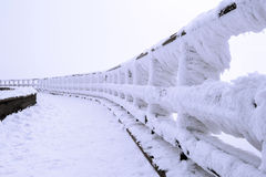 Fence is covered by snow and spruce pattern. Royalty Free Stock Photo