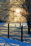 Fence covered snow winter park Stock Photography