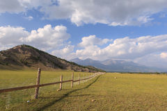 Fence for cows and yaks in mountains. Stock Image