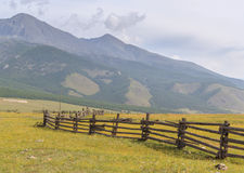 Fence for cows and yaks in mountains. Royalty Free Stock Photos