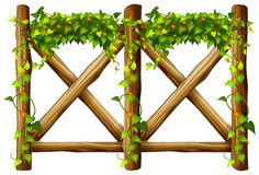 Fence design with wooden fence and vine Stock Photos