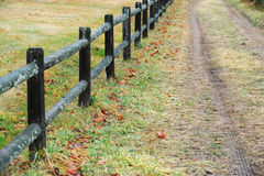 Fence and dirt road in farm. Fence and dirt road in the farm Stock Photo