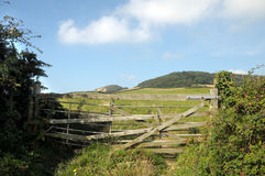 Fence on Dorset coastal path Stock Photography