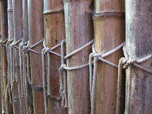 Fence of dry bamboo Stock Photos