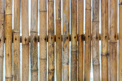 Fence of dry bamboo Royalty Free Stock Image