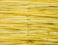 Fence of dry cane Stock Image