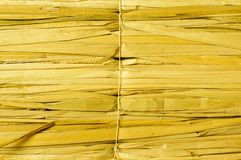 Fence of dry cane Royalty Free Stock Images