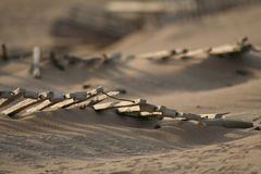 Fence on dunes. Broken fances on a sand dunes Royalty Free Stock Images
