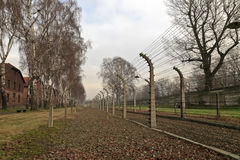 Fence with electrical barbed wire. At Auschwitz concentration camp in Poland Stock Image
