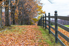 Fence in fall. Fence with Trees and leaves in fall Royalty Free Stock Image
