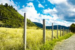 Fence on farm in countryside on sunny day. Overgrown green grass field. stock photography