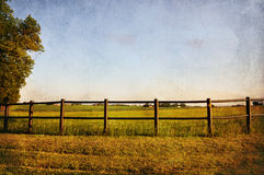Fence and field. Fence in rural country with a vintage look Stock Images