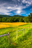 Fence and field at  Cade's Cove, Great Smoky Mountains National Stock Photo