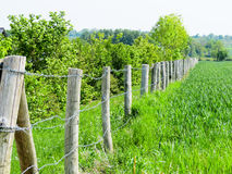Fence in the field Stock Images