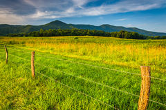Fence in a field and view of mountains at Cade's Cove, Great Smo Royalty Free Stock Photo