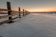 Fence in a field in winter village at dawn Royalty Free Stock Photo