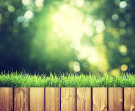 Fence in forest Royalty Free Stock Photography