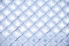 Fence with frost 2 Stock Image