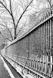 Fence in the frost Royalty Free Stock Image