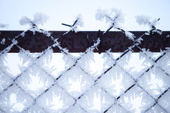 Fence with frost 3 royalty free stock photos