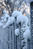 The fence in frost Royalty Free Stock Photos