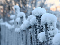 The fence in frost Stock Photos