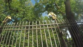 Fence Garden Anichkov Palace stock video footage