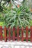 Fence of a garden Stock Photo