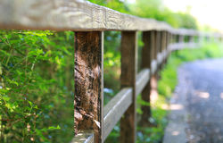 Fence of the garden. Scenery of the fence of the garden with the green of the day when it was fine Royalty Free Stock Image