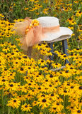 Fence Gardening Stock Images