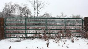 A fence gate covered in ice stock video footage