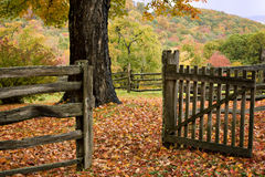 Fence and gate with Fall colors Royalty Free Stock Photos