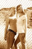 Fence girls Stock Photography