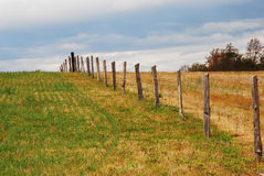 Fence going into horizon. A fence on a field extending into the horizon royalty free stock photos