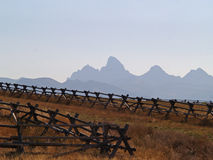 Fence and Grand Tetons Stock Image